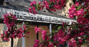 The Playwrights' Center exterior, with a flowering tree